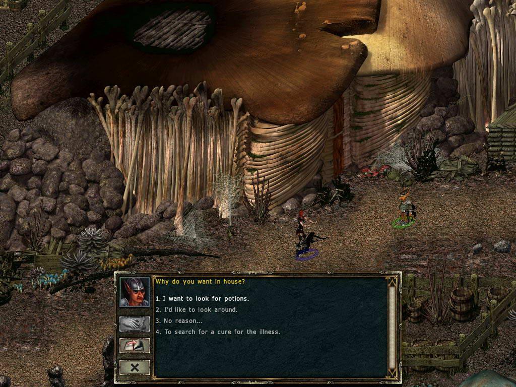 Скриншот Beyond Divinity