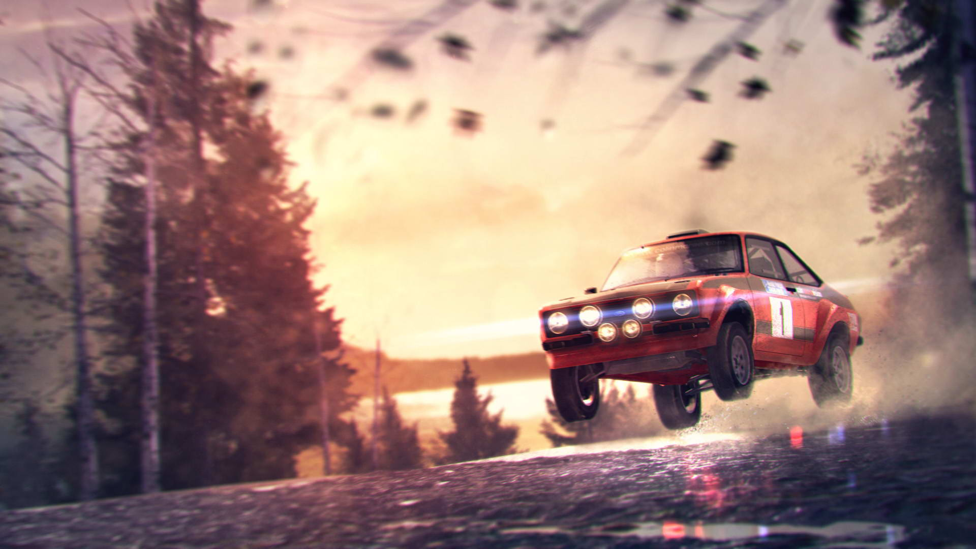Скриншот DiRT 3