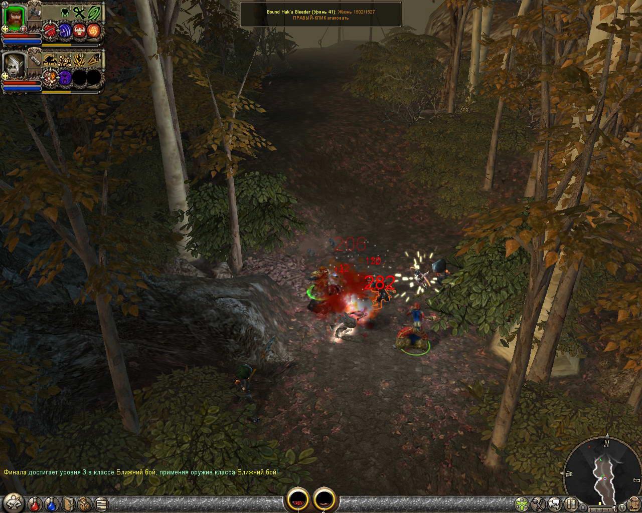 Скриншот Dungeon Siege II
