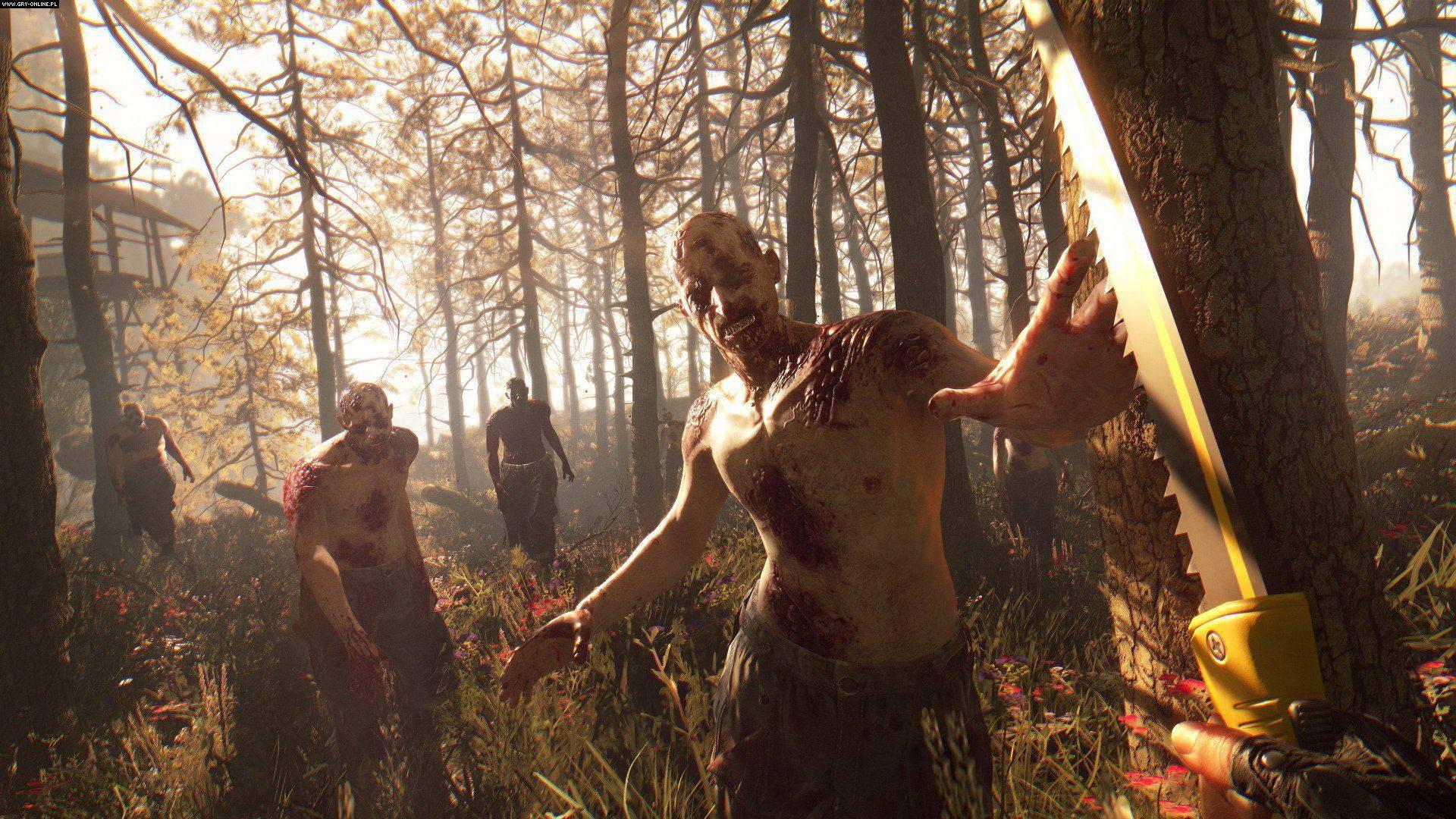 Скриншот Dying Light: The Following