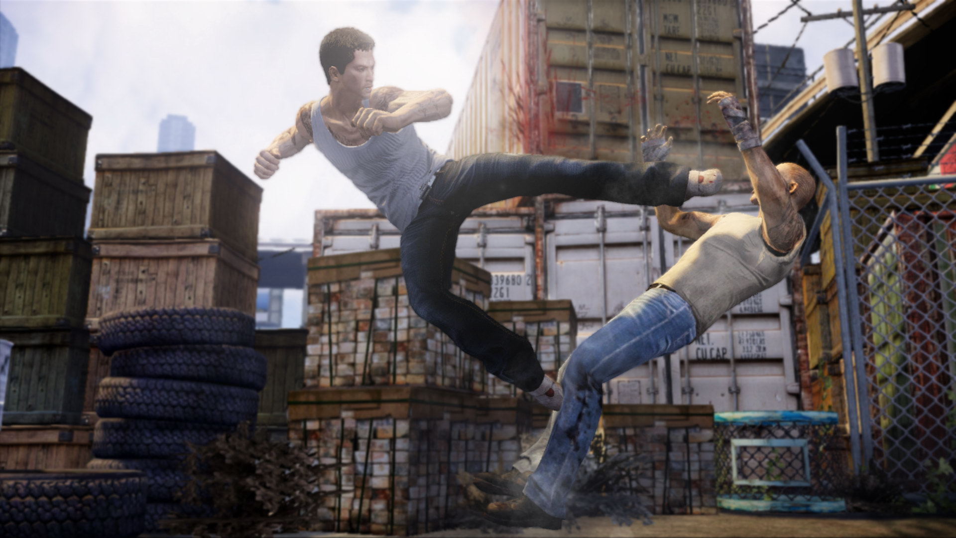 Арт Sleeping Dogs