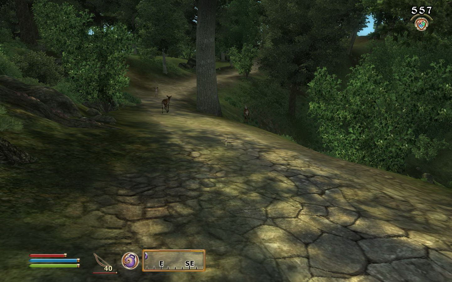 Скриншот The Elder Scrolls IV: Oblivion