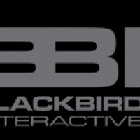 Blackbird Interactive