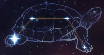 Grim Dawn: созвездие Черепаха
